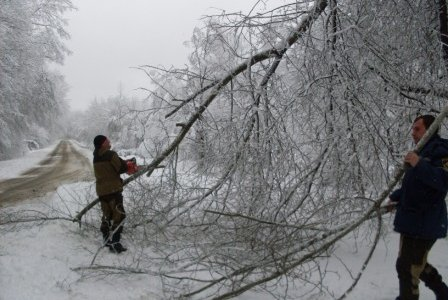 На Сахалине циклон оборвал ЛЭП - нарушено энергоснабжение