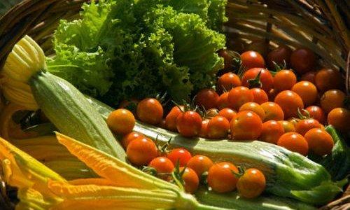 Онищенко разрешил поставки овощей