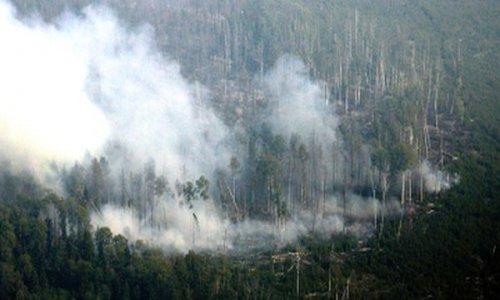 В Бурятии потушены все лесные пожары