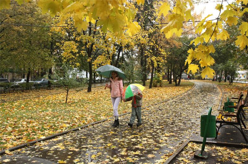 Погода в боброве на сентябрь