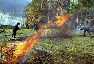 В Сибири площадь природных пожаров за сутки возросла вдвое