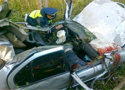 В результате столкновения с лосем в Подмосковье погибли водитель и два пассажира