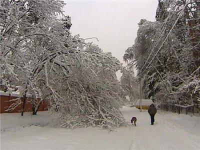 Обильный снегопад идет на территории Алтайского края